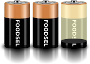 2.1 size D batteries