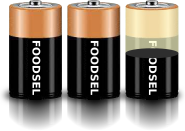 2.5 size D batteries