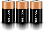 3.0 size D batteries