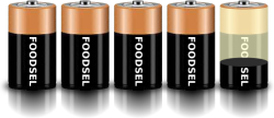 4.3 size D batteries